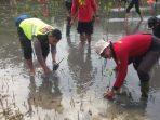 Baru Dicanangkan, Jawi-Jawi Mangrove Mulai Intens Berkolaborasi