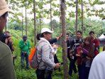 Pendugaan Cadangan Karbon, Tren Sisi Pandang Hutan Terkini