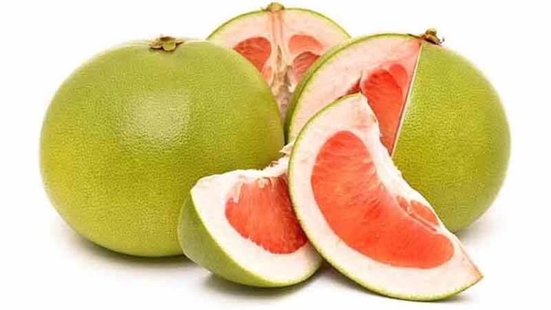 Ilustrasi jeruk bali