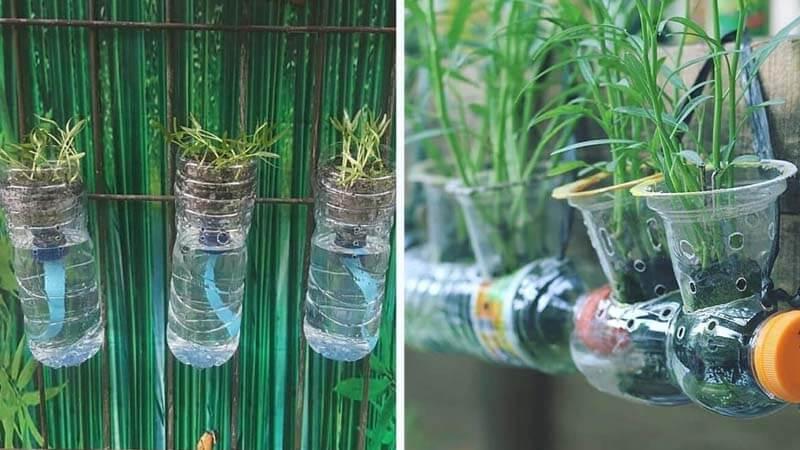 Memanfaatkan Sampah Botol Plastik Untuk Membuat Kebun