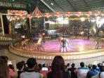 Pertunjukan harimau di Thailand