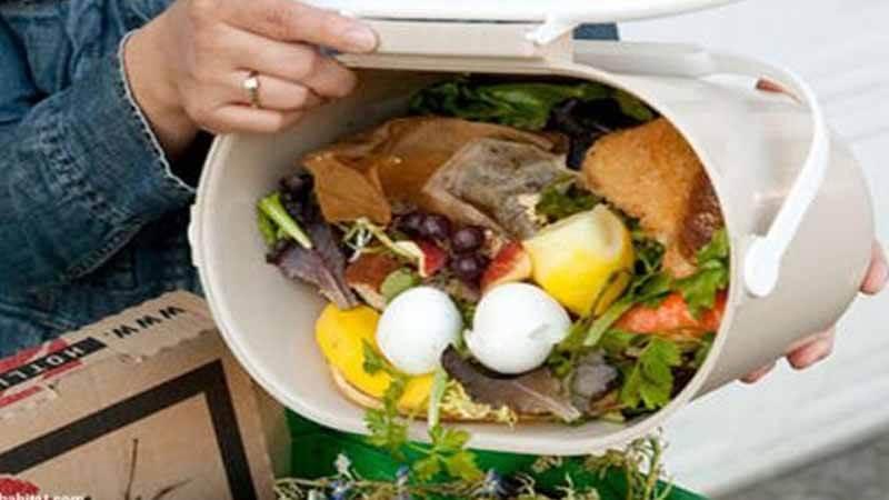 Ilustrasi sampah makanan