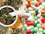 penggunaan obat tradisional