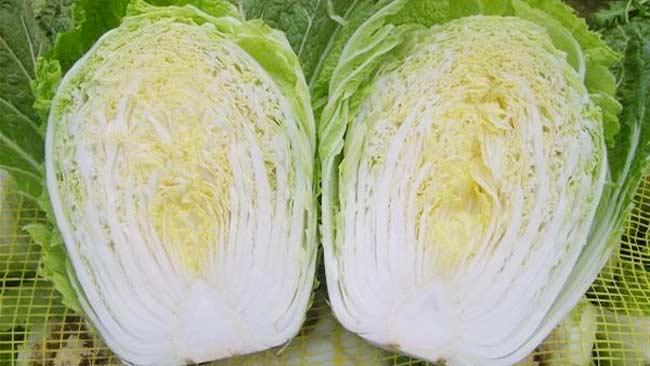 Selain Renyah, Sayur Sawih Putih Punya 3 Manfaat yang Menakjubkan