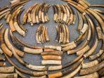 Gading gajah
