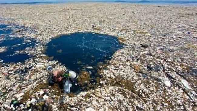 Covid-19 Berkontrubisi Terhadap Meningkatnya Sampah Plastik di Laut