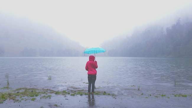 Berwisata dengan Berburu Kabut di Seputar Malang Raya, Ini Tempatnya!