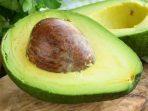 Biofase, Ubah Biji Alpukat Jadi Peralatan Makan Bioplastik