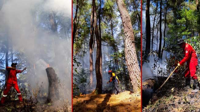 Brigade-Macaca-Jinakkan-Api-di-Bantimurung