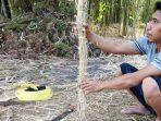 Terinspirasi dari Mentawai, Begini Rencana KBT Memanfaatkan Potensi Bambu di Maros