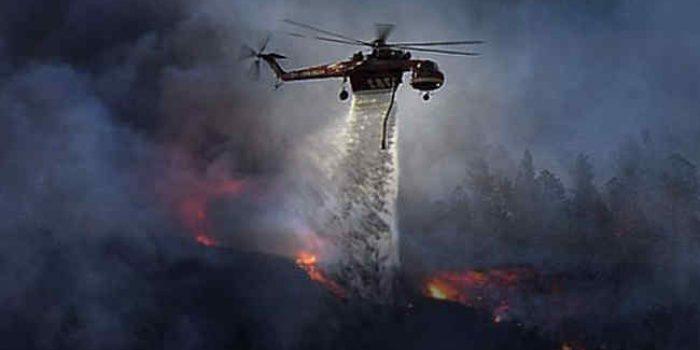 Ilmuwan-Stanford-Kembangkan-Gel-Pencegah-Kebakaran-Hutan