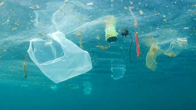Indonesia Butuh Lebih Banyak Penelitian tentang Dampak Plastik di Laut