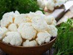 Jenis Makanan Ini Sehat Bagi Penderita Penyakit Ginjal