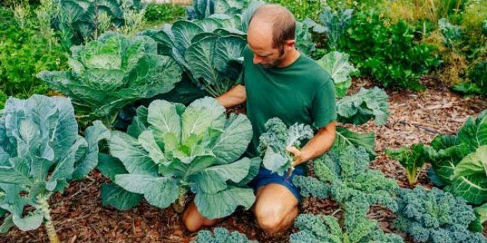 Rob Greenfield, Aktivis Lingkungan yang Menanam Sendiri Keperluan Makannya Sehari-hari