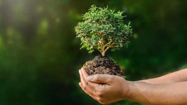 Fungsi Alam Semesta dan Cara Bijak bagi Manusia Menjaga Kebermanfaatannya