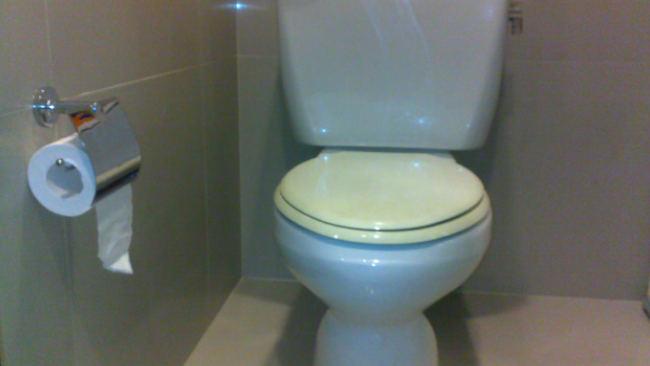 Betapa Repotnya Beradaptasi dengan Toilet Amerika