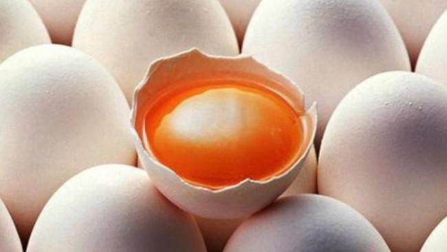 Telur Ayam di Indonesia Mulai Dihuni Partikel Sisa Sampah Plastik