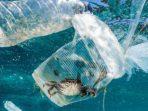 Sampah plastik di laut