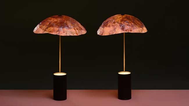 Tudung Lampu Ramah Lingkungan Ini Terbuat dari Kol