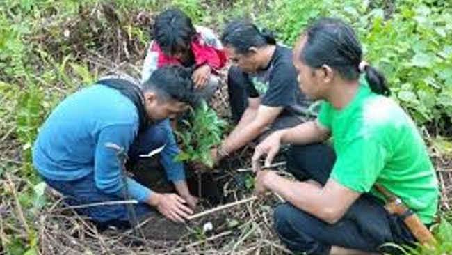 Jaga Sumber Air, Laskar Hijau Datangkan Pohon dari Kenya