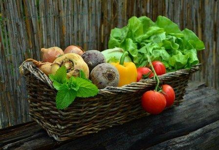 Konsumsi Sayur Organik, Rasakan 7 Manfaat Terbaiknya
