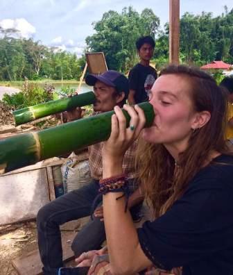 Otentik, 7 Tanaman Ini Berhubungan Erat dengan Budaya Toraja