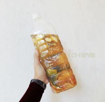 Eco Enzyme, Cairan Ajaib Hasil Fermentasi Sampah Organik yang Multiguna