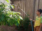 Murid SDN Borong Gelorakan Semangat Adiwiyata dari Rumah