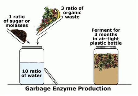 komposisi eco enzyme