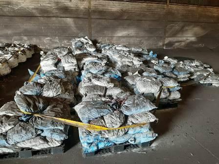 Dumping limbah B3 milik PT DPL