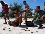 Konservasi Penyu, TN Takabonerate Melepasliarkan Tukik di Pulau Pasitallu Timur
