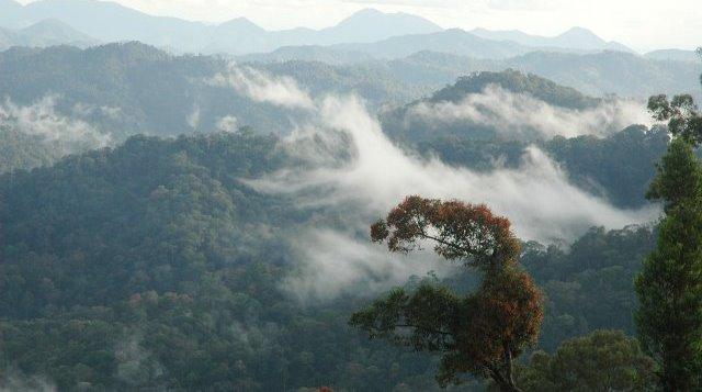 Lebih Dekat dengan TNBK, Kawasan Konservasi Lintas Batas Pertama di Asia