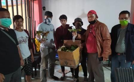 Mengungkap Perdagangan Ilegal Tumbuhan Dilindungi ke Luar NegeriMengungkap Perdagangan Ilegal Tumbuhan Dilindungi ke Luar Negeri