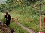 Murang, Tradisi Maskulin di Bulukumba untuk Menjaga Tanaman