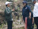 Sukses Tekan Laju Deforestasi, Indonesia dapat Suntikan Dana Segar dari Norwegia