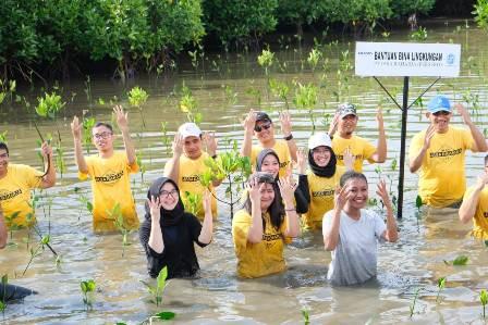 kerjasama di mangrove lantebung