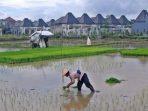 Alih Fungsi Lahan, Ancaman Krisis Pangan dan Pertanian Berkelanjutan