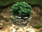 Hari Lingkungan Hidup dan Agenda Pembangunan Berkelanjutan yang Terbengkalai