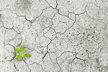 Iklim, Perubahan Iklim dan Isu Relevan Lainnya yang Penting Diketahui