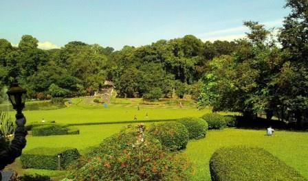 Peran Kebun Raya untuk Konservasi Keanekaragaman Hayati