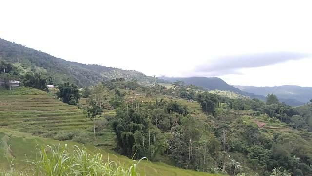 Keindahan alam di desa Topidi