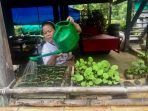 Trik Menghasilkan Rupiah dari Taman Rumah