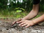 Peduli Lingkungan, Bisa Dimulai dari 10 Tindakan Sederhana Ini!