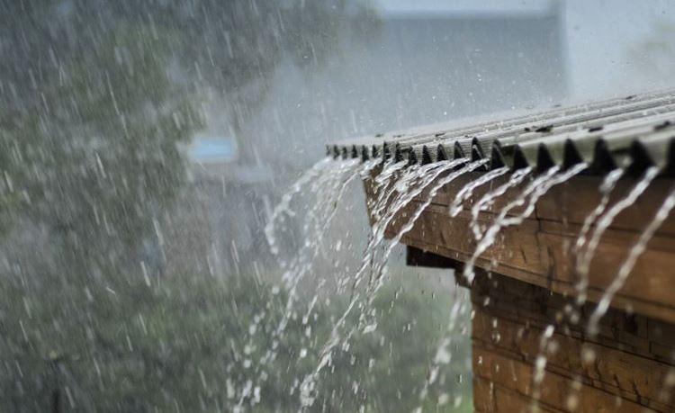 Sapardi Djoko Damono, Hujan, dan Mikroplastik