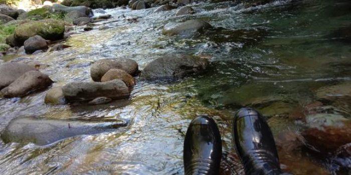 27 Juli, Hari Peduli Sungai Nasional, Apa Aksimu Saat Sungai Semakin Tercemar