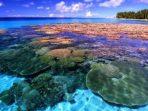 Bagaimana Kondisi Ekosistem Pesisir dan Laut Indonesia Saat ini?