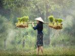 Membangun Sistem Pangan Berkelanjutan, Memberdayakan Petani dan Desa