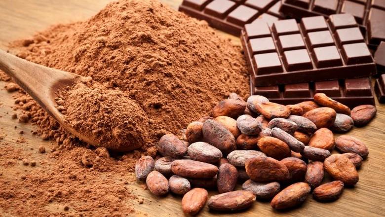 Meresepi Manfaat Olahan Kakao dan Cokelat untuk Kesehatan • Klik Hijau