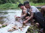 Berkah Kearifan Lokal, Masyarakat Adat Sungai Utik Tangguh Menghadapi Pandemi