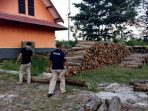 KLHK Tahan Tersangka Peredaran Kayu Ilegal di Kotawaringin Barat